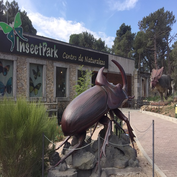 Insect Park