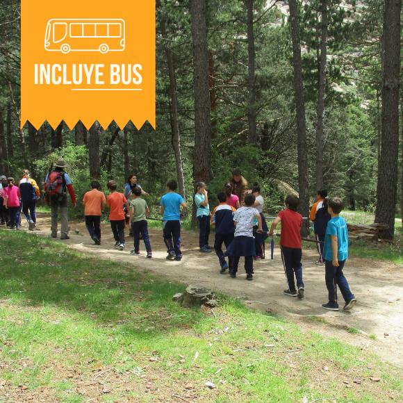 Excursiones de montaña inclusivas en Madrid